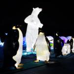 光のオブジェ(ホッキョクグマとペンギン)